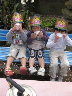 甘茶を飲む園児