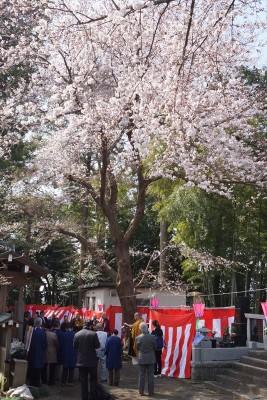 生物供養祭とお花見 2014-no.6