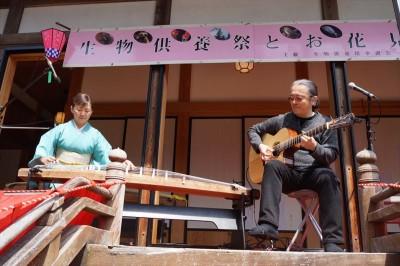 生物供養祭とお花見 2014-no.9