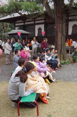 生物供養祭とお花見 2016 -no.3