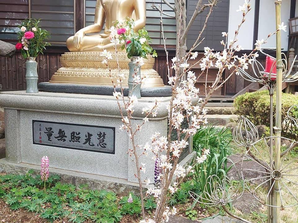 花まつりお茶会2021-4